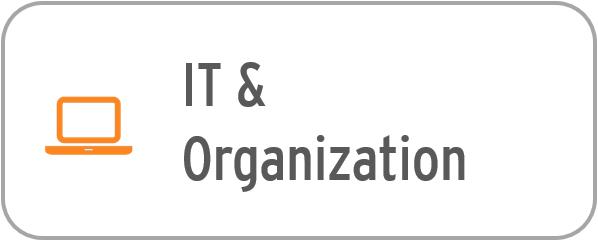 It & Organization